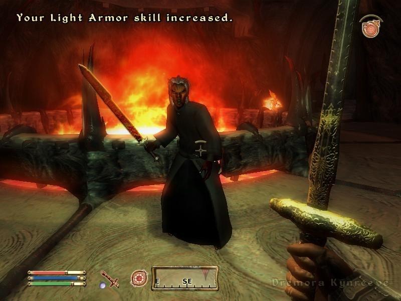 The Elder Scrolls 4 Oblivion Free Download - igobgames.com