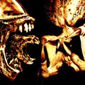 Aliens vs Predator Gold
