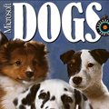 Microsoft Dogs