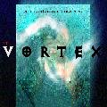 The Vortex: Quantum Gate II