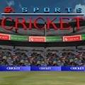 Cricket 96